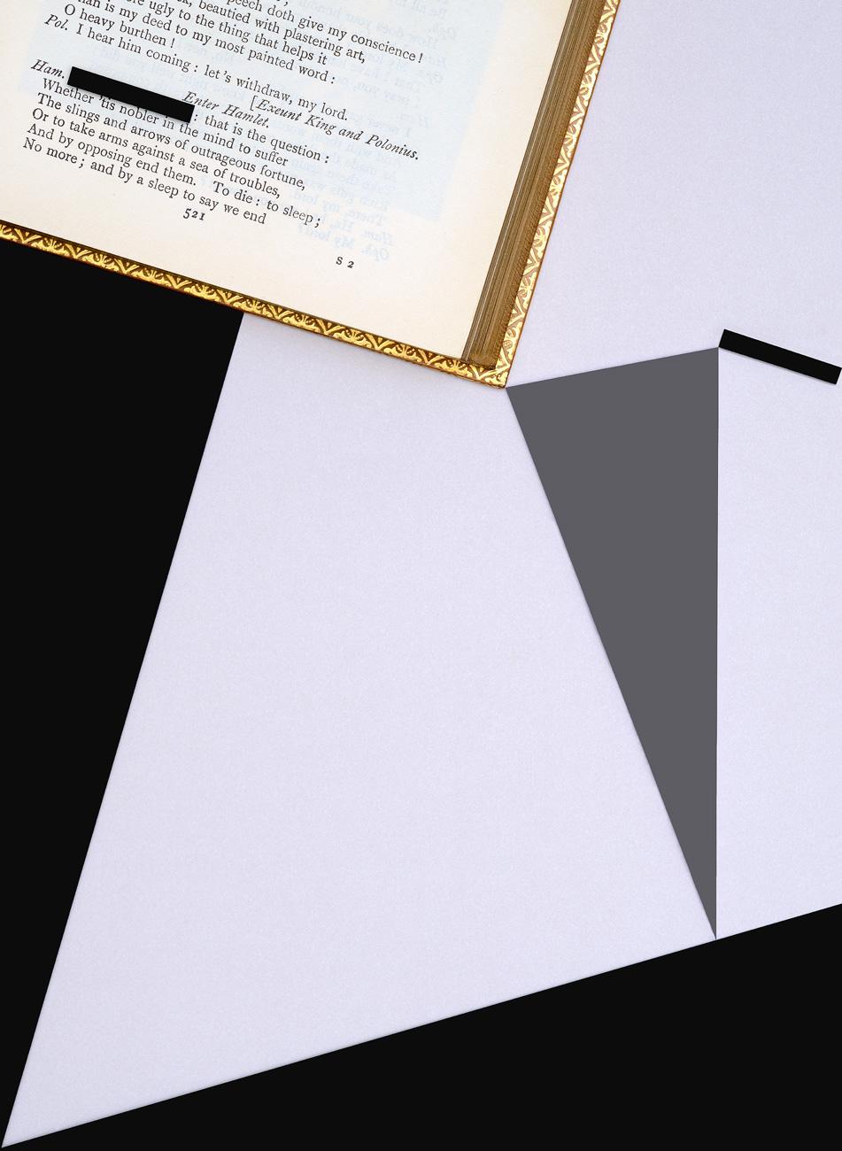 Gauthier d'Ydewalle | Shakespeare | Fotografia C-Print em metacrilato | 109 x 80 cm | 2015